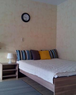 Apartment on Dusi Kovalchuk