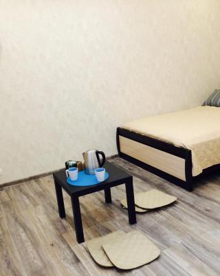 Apartment on Checherskiy