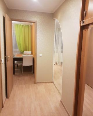 Puskini 65 Apartment