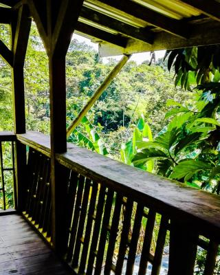 One World Costa Rica
