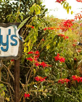 Buddy's Hostel & Pousada Alto Paraiso