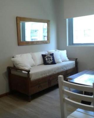 Great Apartment Downtown Mendoza!