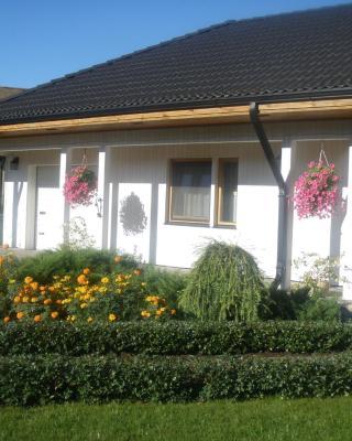 Cat Garden Riga Airport Apartments