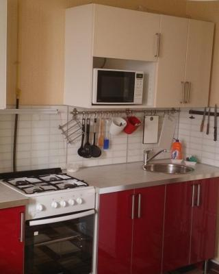 Apartment on Shevchenko 288