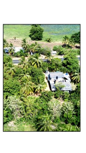 Sun and Green Eco Lodge