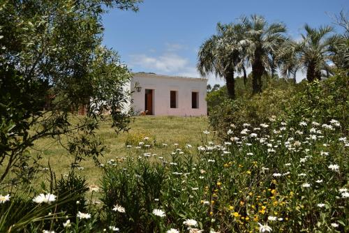 Casa de campo cerca de Cabo Polonio (Uruguai Cabo Polonio ...