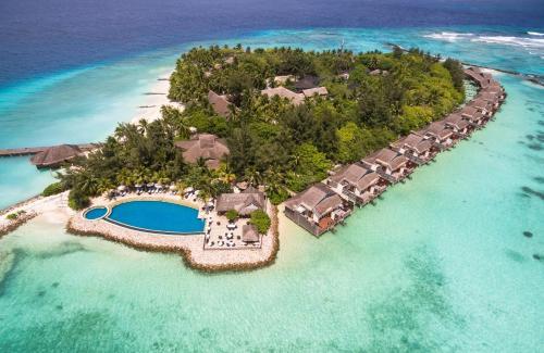 Vivanta By Taj - Coral Reef