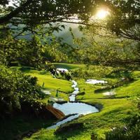 Eco Resort Nagual