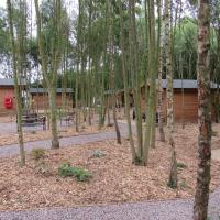 Riddings Wood lodges