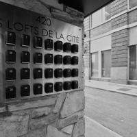 Les Lofts de la Cité