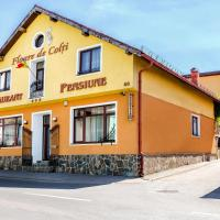 Pension Floare de Colti