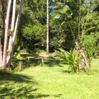 Camping canela parda