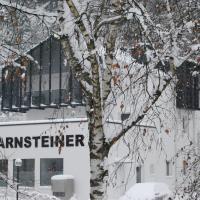 شقق أرنشتاينر