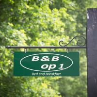 Bed & Breakfast Orvelte