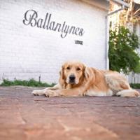 Ballantynes Lodge