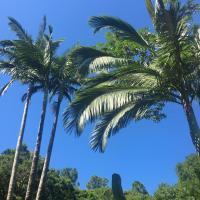 Pousada Jardim Da Lagoa