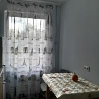 Nice apartment in Cesis