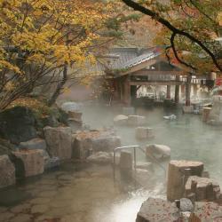 מקומות אירוח עם אונסן  10 מקומות האירוח עם אונסן ב-Gifu